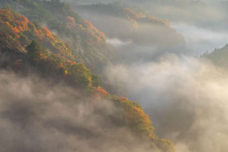 The morning mist that seems to cover the mountains in red leaves 写真素材