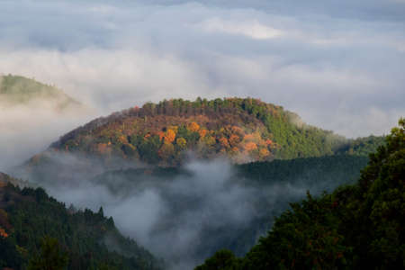 A round mountain with red leaves and the morning mist 写真素材