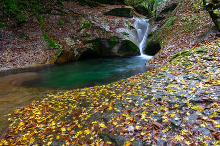 A mountain stream with lots of leaves falling 写真素材