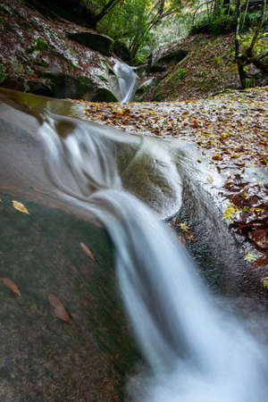 clear stream flowing with great speed 写真素材