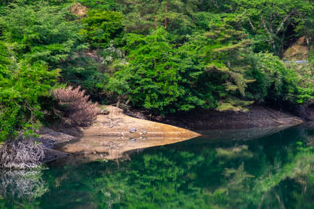 Forest and rocky surface reflected in the lake