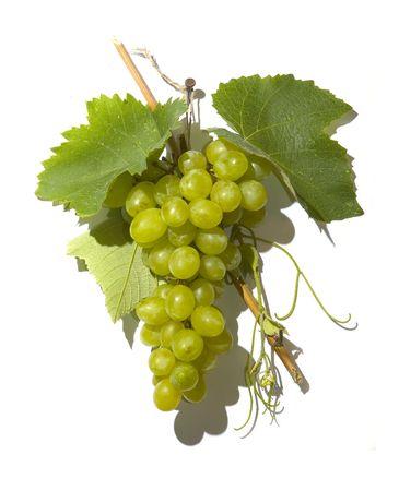 White vine grapes