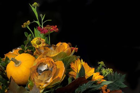 floral composition with flowers and pumpkin on the black backround photo