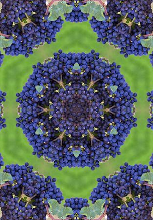 blue wine grapes mandala Stock Photo - 284012