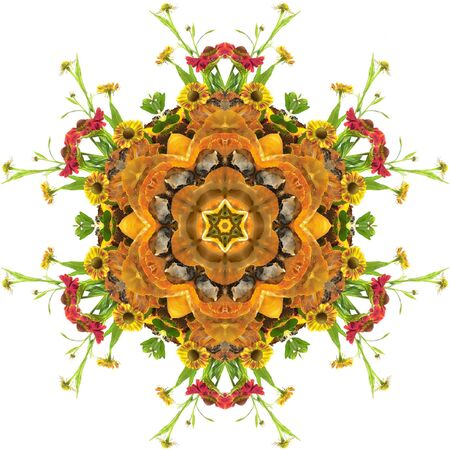 autumn floral mandala with flowers and pumpkin photo