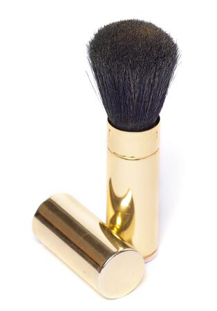 brush in: powder brush in golden case