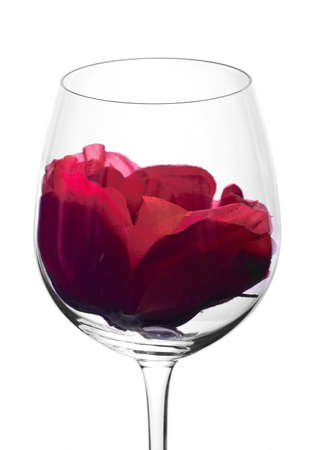 wine glass in backlight with red flower