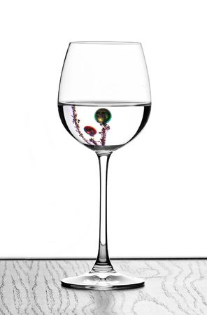 isoliert: christmas wine glass in backlight Stock Photo