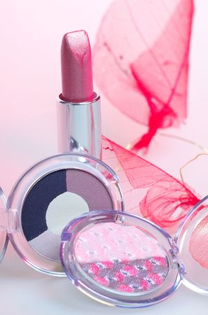 rose lipstick and duo eyeshadows over leaf Stock Photo