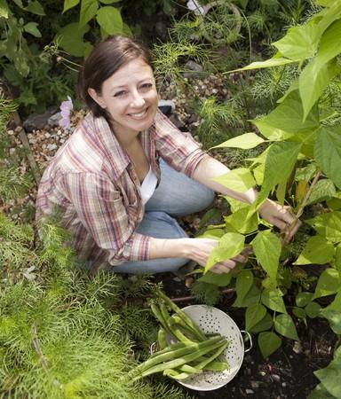 garden bean: Smiling Woman Gardening