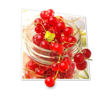 Red Currants 3d Illustration