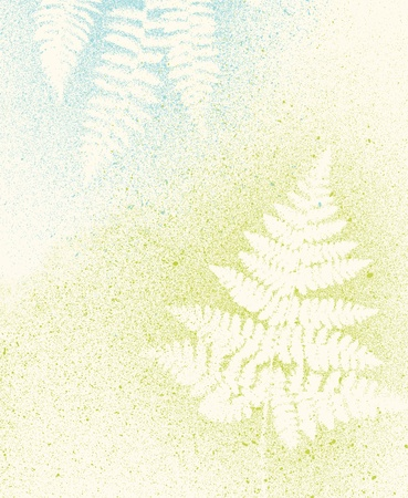 artistic botanical fern nature light background texture Stock Photo
