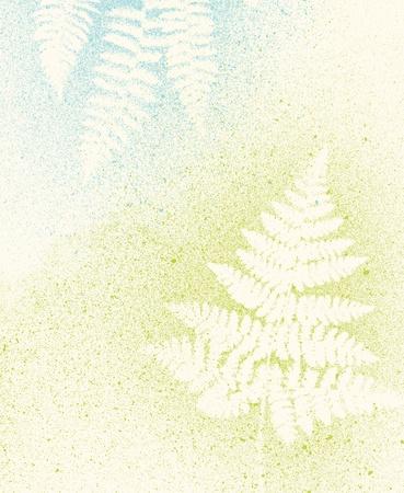 artistic botanical fern nature light background texture Standard-Bild