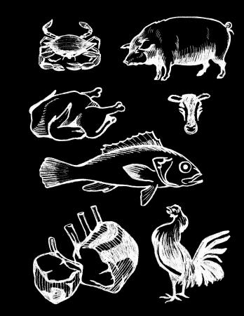 set of hand drawn textured food illustrations in vintage chalkboard style  illustration