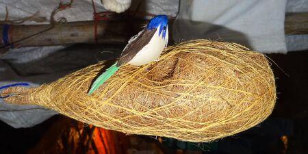 Bird and the Nest