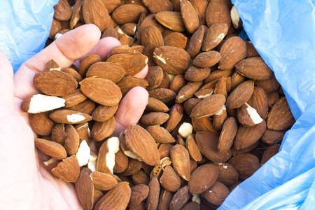 Hand holds group of almond from blue plastic bag