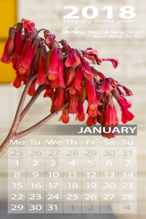 january calendar 2018 with red flower background