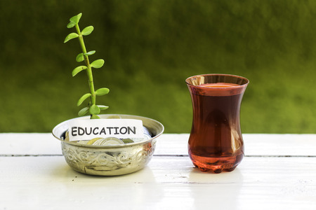 plant growing out of algeria coins in silver bowl ,education money saving concept and drinking an arabic tea