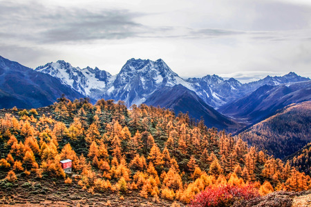 Baimang (White horse) Snow Mountain in autumn, Shangri-La, Yunnan Province, China