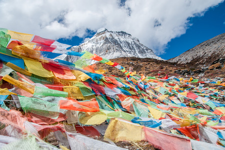 Colorful autumn with prayer flags  in Yading national level reserve, Daocheng, Sichuan Province, China.