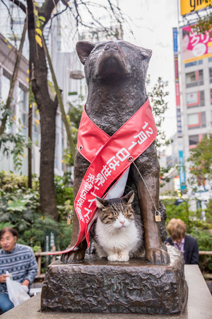 remembered: Tokyo, Japan - November 21, 2015: Unidentified people at Bronze statue of Hachiko at Shibuya Station. A dog is remembered for his remarkable loyalty to his owner which continued for many years, Tokyo, Japan. Editorial