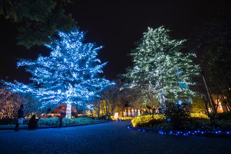 Mie,Nagoya, Japan - November 23, 2015 : Unidentified tourist visiting Nabana no sato winter illumination in Mie ,Nagoya,Japan. It is one of Japan's largest illumination parks.