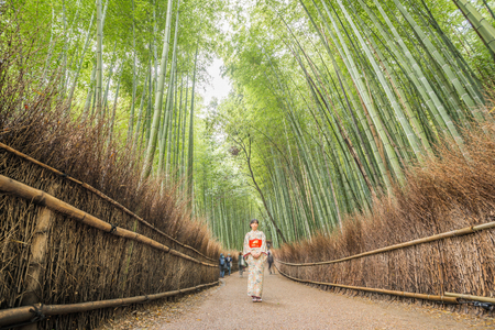 designated: Kyoto, Japan - November 26, 2015: Blur motion of unidentified people visit bamboo forest in Arashiyama of Kyoto ,Japan. Arashiyama is a nationally-designated Historic Site and Place of Scenic Beauty.