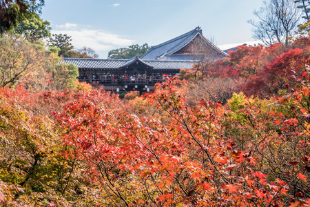 Kyoto, Japan- November 28,2015 :  Unidentified tourists visit Tofukuji Temple to celebrate the autumn maple leave festival in Kyoto, Japan. Editorial