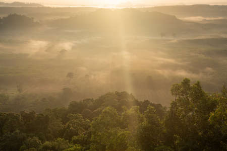 Landscape of beautiful morning fog sunrise in Surat Thani southern of Thailand