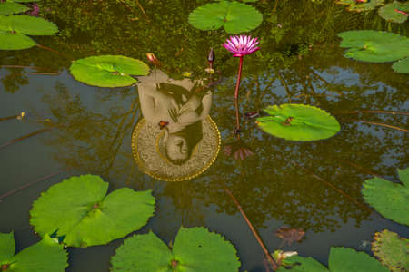 Buddha statue reflection in a lotus pond at Khao Na Nai Luang Dharma Park in Surat Thani province of Thailand