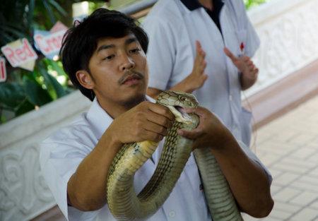 rood kruis: slang op Thaise rode kruis