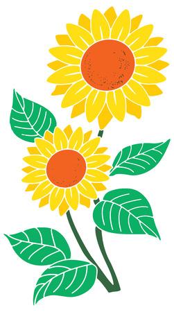 Sun Flower Vector