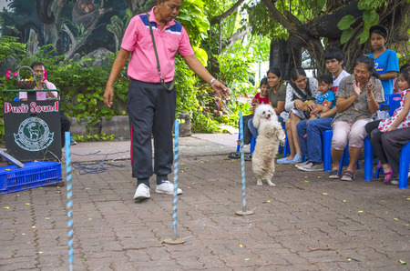 BANGKOK - AUGUST 2 2014, Dusit Sound Dog Show in Dusit Zoo or Kaow-din Zoo ,More Dog have a special talent show for free,for people who come to visit Dusit Zoo. AUGUST 2 2014 - BANGKOK THAILAND