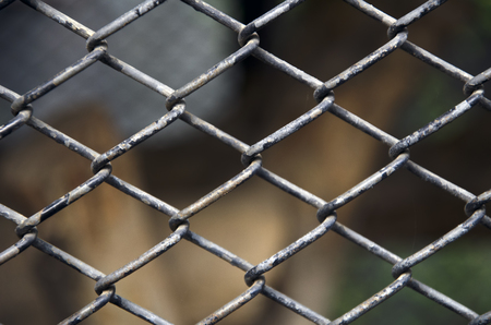 enclose: net cage background Stock Photo
