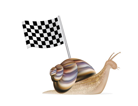 persevere: snail with racing flag