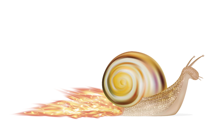 speed snail on a white background