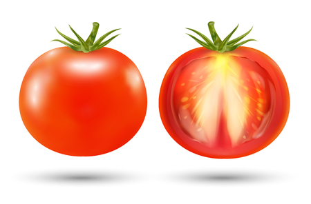 A real red tomato on a white background Illustration