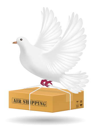carrier pigeons: white pigeon flying with air shipping delivery