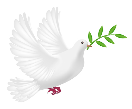 peace concept: white pigeon flying with leaf concept peace Illustration