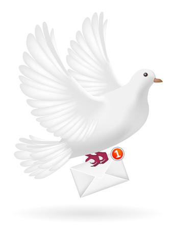carrier pigeons: white pigeon bird sending white envelope letter