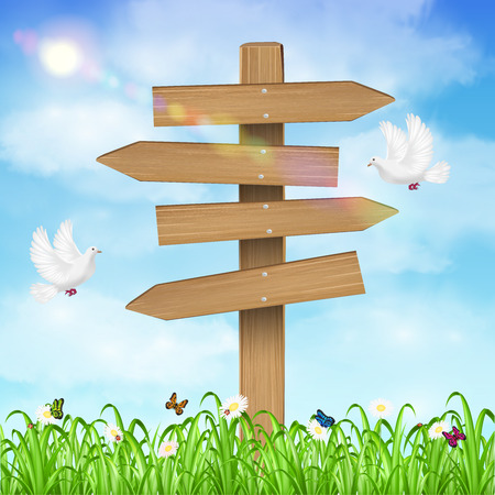 Panneau de direction en bois sur fond de ciel d'herbe Banque d'images - 85419333