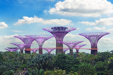 SINGAPORE - 14 October 2018 : View of amazing illumination at Garden by the Bay in Singapore.