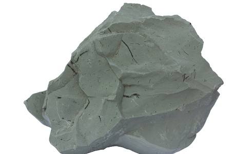burrows: Blue clay from the Cambrian of Estonia  Kunda Quarry   This clay is remarkable because it is still semi-soft and will absorb water when wet despite being approximately half a billion years old  There are some pyritized burrows visible on the rocks surface Stock Photo