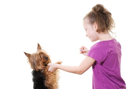pre-teen girl playing with pet dog Stock Photo - 13278428