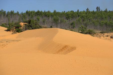 vicinity: Red dunes in the vicinity of Mui Ne. Vietnam