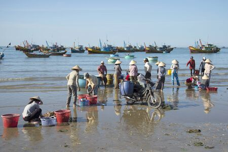 ne: MUI NE, VIETNAM - DECEMBER 25, 2015: Fishermen sorting the catch of the night in the fishing village of Mui Ne