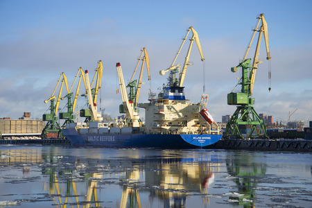 reefer: ST. PETERSBURG, RUSSIA - FEBRUARY 17, 2016: Reefer Baltic spring on unloading at the St. Petersburg cargo port