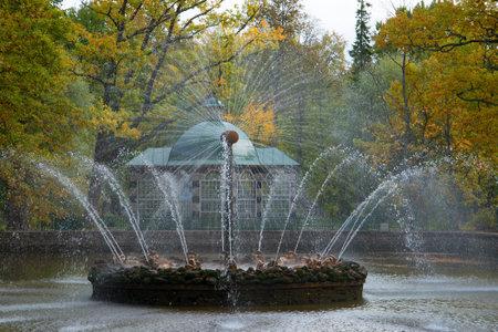 petergof: SAINT PETERSBURG, RUSSIA - OCTOBER 05, 2015: Fountain the Sun in the autumn Peterhof
