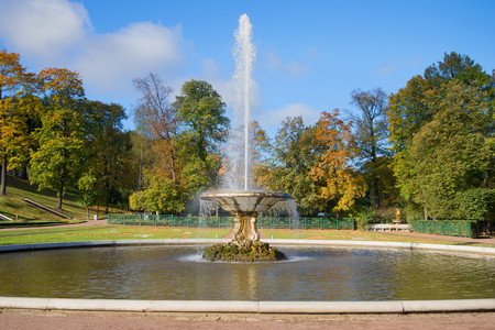Fountain Bowl in the Lower Park, golden autumn. Peterhof, Russia Stock Photo