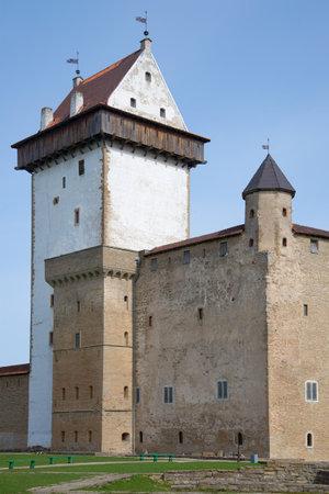 herman: The old tower of Long Hermann in Narva castle closeup. Estonia